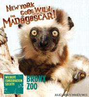 Bronx Zoo's Madagascar Exhibit